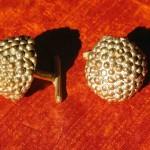 Polline-piccoli-BR-Gemelli-